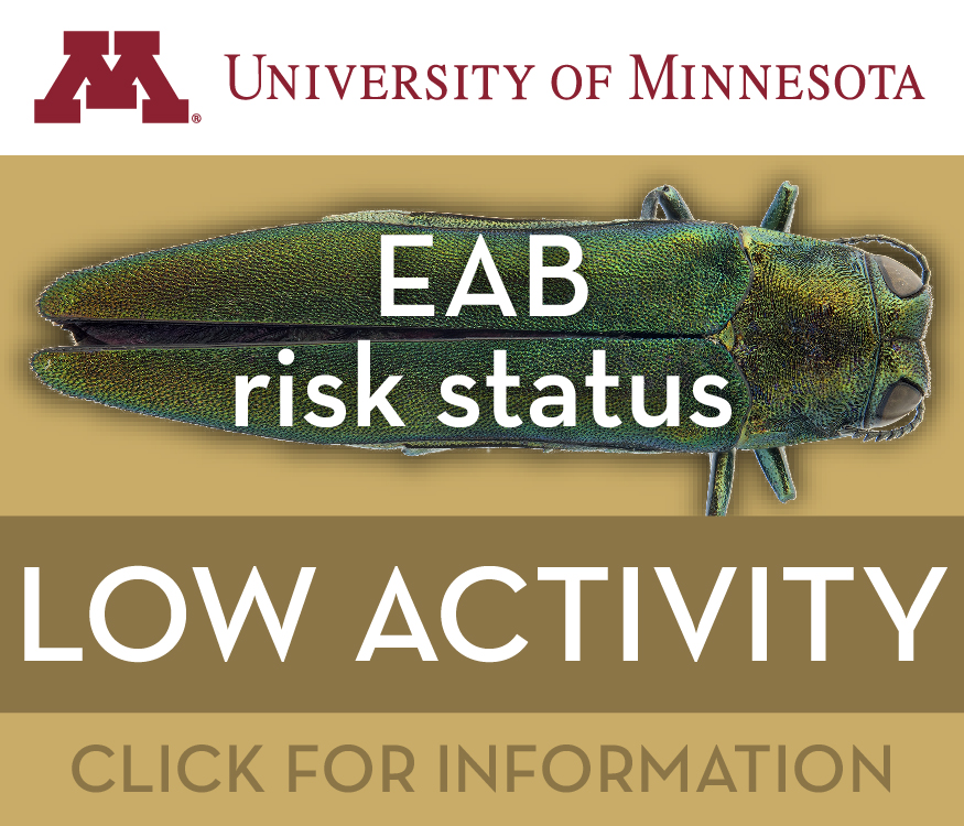 emerald ash borer activity low risk logo