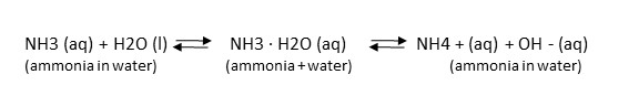 Chemical equation for the equillibrium of ammonia, water, and ammonium.
