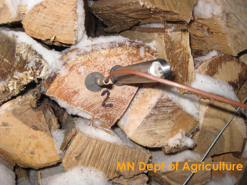 Firewood with temperature probe inserted