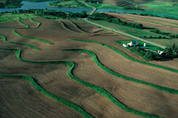 Steeply sloped cropland with a series of terraces. Photo courtesy USDA NRCS.