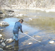 MDA employee collecting a water sample